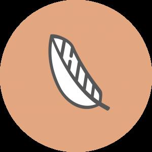 Picto-Coaching-macaron